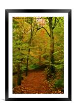 Autumn Enchantment, Framed Mounted Print