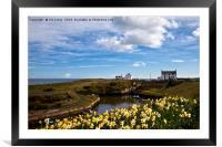 Springtime at the coast, Framed Mounted Print