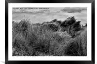 Sand Dunes in Black and White, Framed Mounted Print
