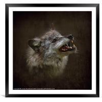 Big Bad Wolf, Framed Mounted Print