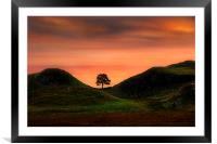 Sycamore gap, Framed Mounted Print