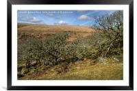 Wistman's Wood Devon, Framed Mounted Print