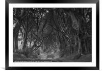 The Dark Hedges, Framed Mounted Print