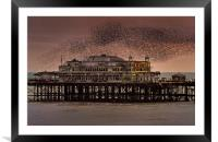 West Pier Starlings, Brighton, Framed Mounted Print