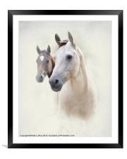 Misty, Framed Mounted Print