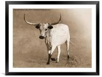 Coming Home in Sepia, Framed Mounted Print