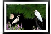 Tropical Paradise, Framed Mounted Print
