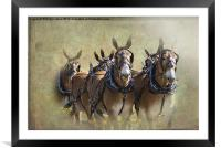 Old West Mule Train, Framed Mounted Print