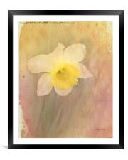 Dancing With The Daffodils, Framed Mounted Print