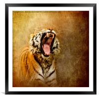 I Am Woman, Hear Me Roar, Framed Mounted Print