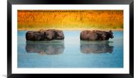 Hot Day, Framed Mounted Print