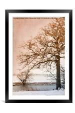 The Beauty of Winter, Framed Mounted Print