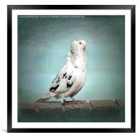 Be My Friend, Framed Mounted Print