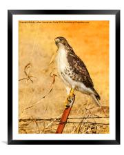I Can See Clearly, Framed Mounted Print