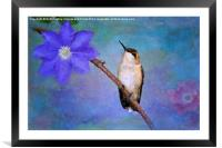Beauty Surrounds Me, Framed Mounted Print