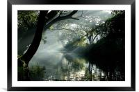 Morning light in Aleppey, India, Framed Mounted Print