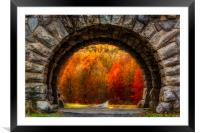 Natures Color Schemes, Framed Mounted Print