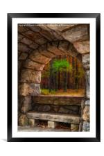 Forest Contemplation Invite, Framed Mounted Print
