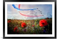 Red 5, Framed Mounted Print