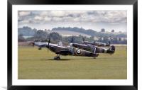 Spitfires, Framed Mounted Print