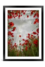 Red 9 , Framed Mounted Print