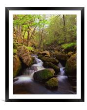 Spring in Padley Gorge, Framed Mounted Print