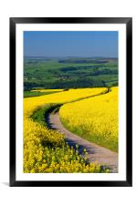 Rapeseed field near Damflask Reservoir, Framed Mounted Print