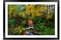 Rivelin Valley Waterfall, Framed Mounted Print