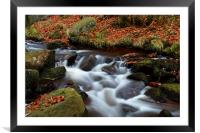 Autumn In Padley Gorge, Framed Mounted Print