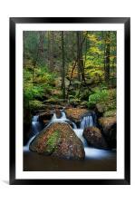 Wyming Brook Nature Reserve, Framed Mounted Print
