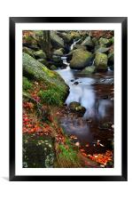 Autumn Colours in Padley Gorge, Framed Mounted Print
