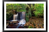 Rivelin Waterfalls in Autumn , Framed Mounted Print