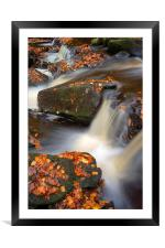 On the Rocks in Padley Gorge , Framed Mounted Print