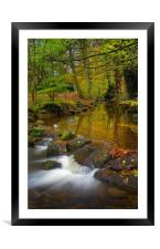 Porter Brook Falls in Endcliffe Park , Framed Mounted Print