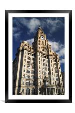 Royal Liver Building                      , Framed Mounted Print