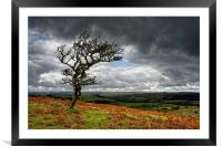 Dark Clouds over Combestone Tor                   , Framed Mounted Print