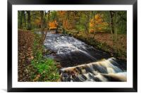 Rivelin in Autumn                                 , Framed Mounted Print