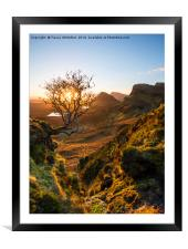 The Quiraing Tree , Framed Mounted Print