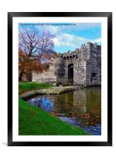 FALLING LEAVES AT BEAUMARIS CASTLE, Framed Mounted Print