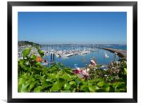 A Peak at the Harbour                          , Framed Mounted Print