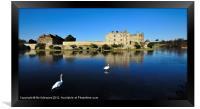 Skating Swans at Leeds Castle, Framed Print