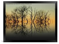 Silhouetted Grey, Framed Print