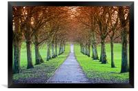 Path To The Castle, Framed Print