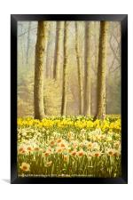 A Spring Day, Framed Print