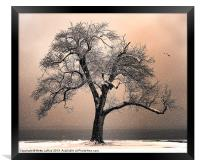 By the Lake, Framed Print