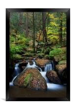 Wyming Brook Nature Reserve, Framed Print