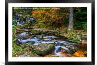 Autumn At The Falls , Framed Mounted Print