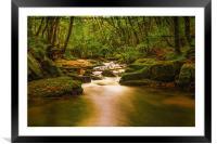 Golitha Falls. , Framed Mounted Print