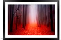 The Red Forest, Framed Mounted Print