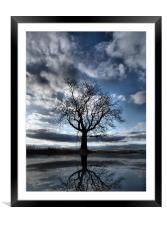Wintering Oak Tree, Framed Mounted Print